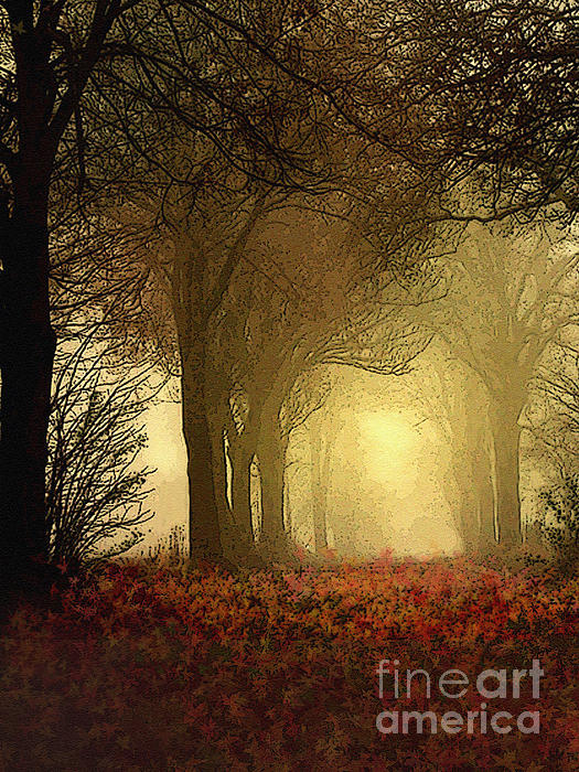 Leaf Path Print by Robert Foster