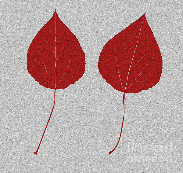 Leafs Rouge Print by Bruce Stanfield