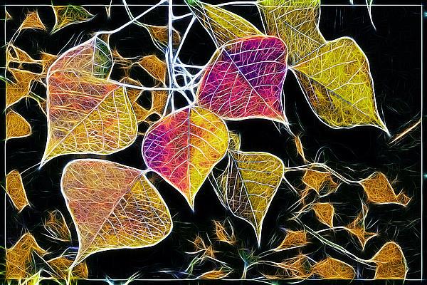 Leaves Print by Judi Bagwell