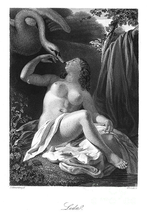 Leda And The Swan Print by Granger