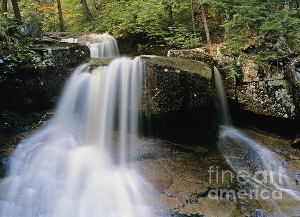 Ledge Brook - White Mountains New Hampshire Usa Print by Erin Paul Donovan