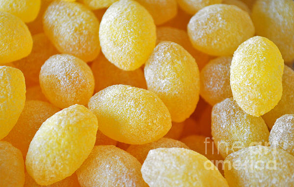 Lemon Drops Print by Gwyn Newcombe