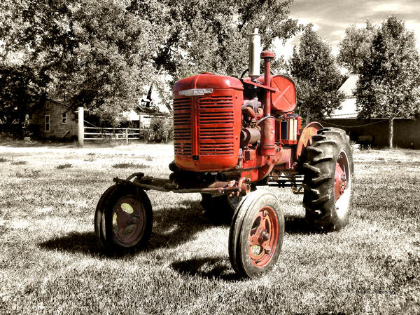 Life On The Farm Print by Susan Kinney