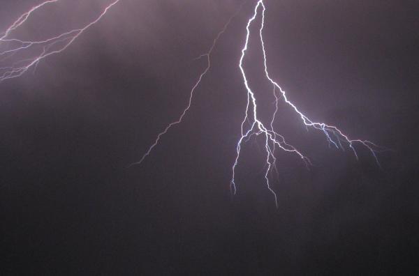 Maribel McIntosh - Lightning Spark