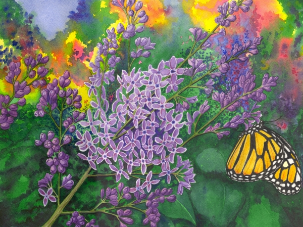 Lilac Print by Catherine G McElroy