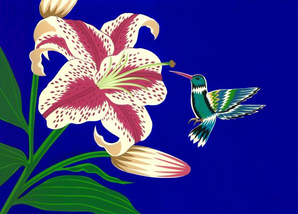 Lily And Hummingbird Drawing  - Lily And Hummingbird Fine Art Print