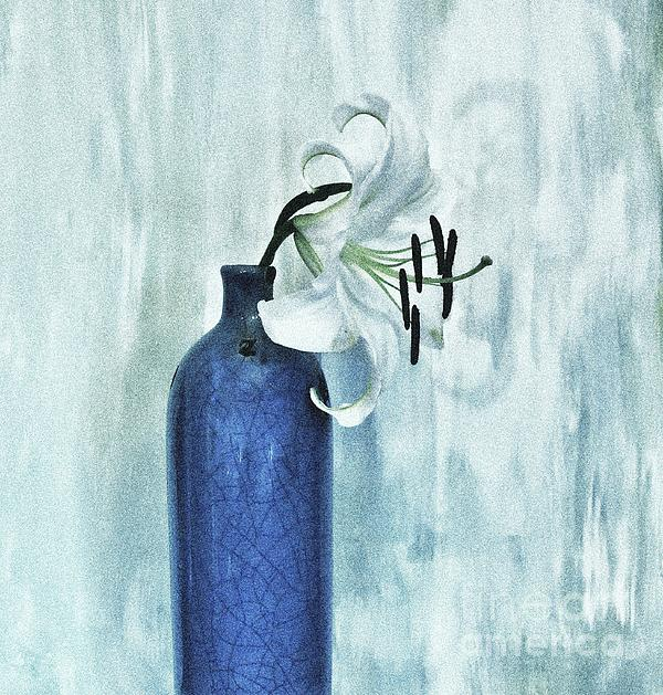 Lily In Blue Print by Marsha Heiken