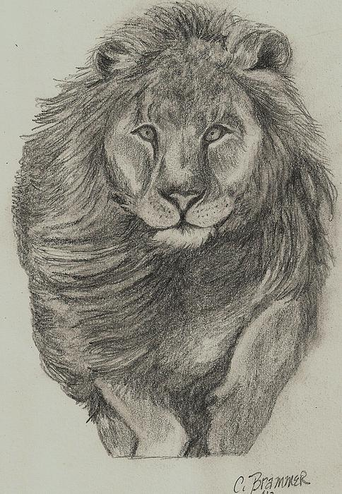 Christy Brammer - Lion