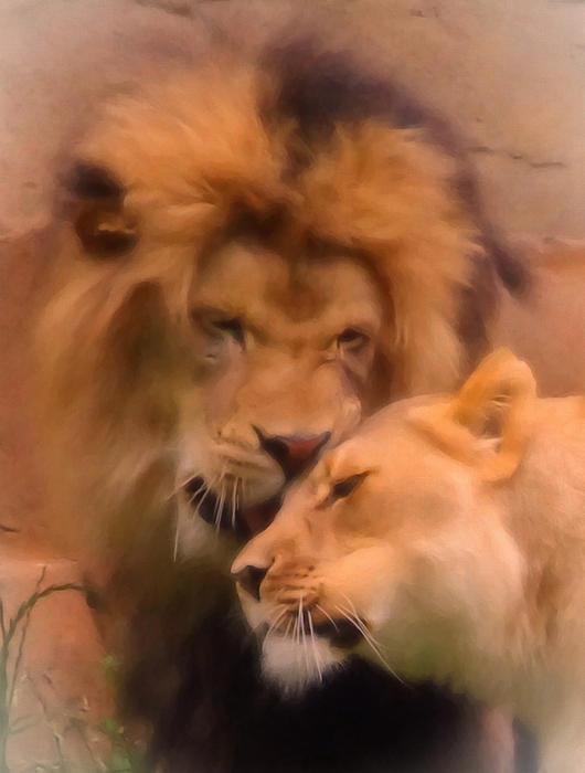 Jan Bonner - Lion Romance