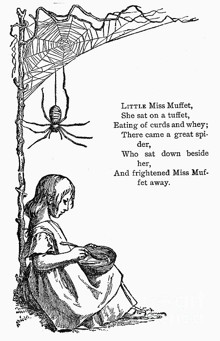 Little Miss Muffet Print by Granger