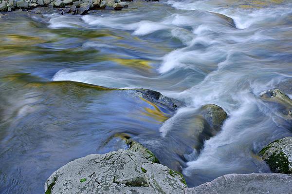 Little River Great Smoky Mountains Print by Dean Pennala