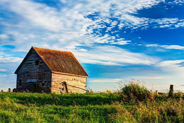 Little Shed On The Prairie Print by Matt Dobson