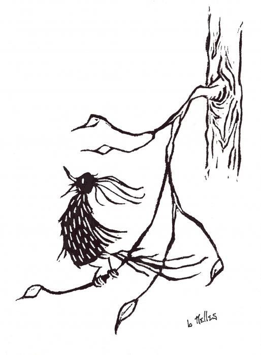 Little Singing Bird On Branch Print by Barry Nelles Art
