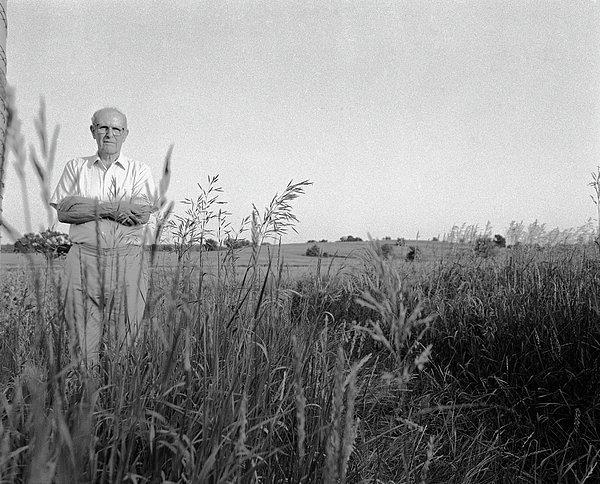 Lloyd Owens On His Farm Print by Jan Faul