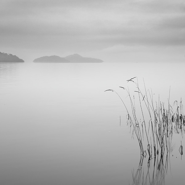 Loch Lomond Grass Print by Billy Currie Photography