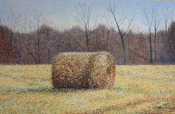 Lone Haybale Print by Patsy Sharpe