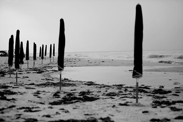 Lonely Beach Print by Toni Hopper