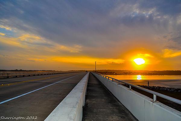 Shannon Harrington - Long Bridge