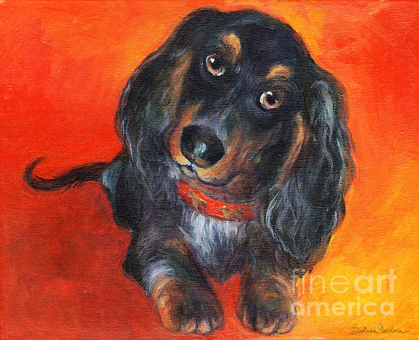 Long Haired Dachshund Dog Puppy Portrait Painting Print by Svetlana Novikova