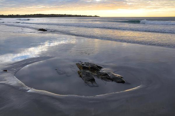 Longsands Rock 2 Print by Catherine Easton