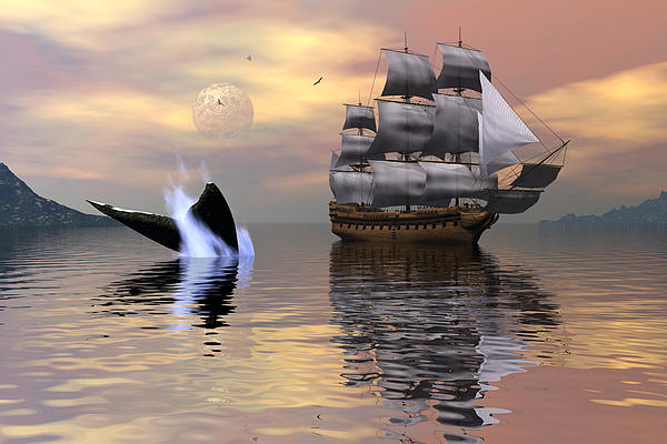 Looking For Moby Dick Print by Claude McCoy