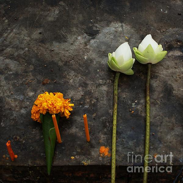 Lotus Flowers On A Thai Shrine Print by Paul Grand