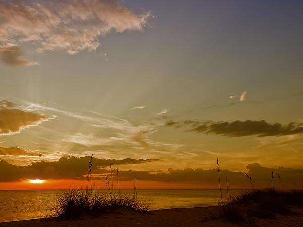 Lovely Sunset Print by Melanie Viola