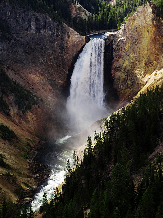 Lower Falls At Yellowstone Photograph