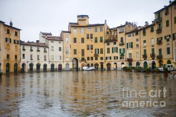 Lucca Print by Andre Goncalves