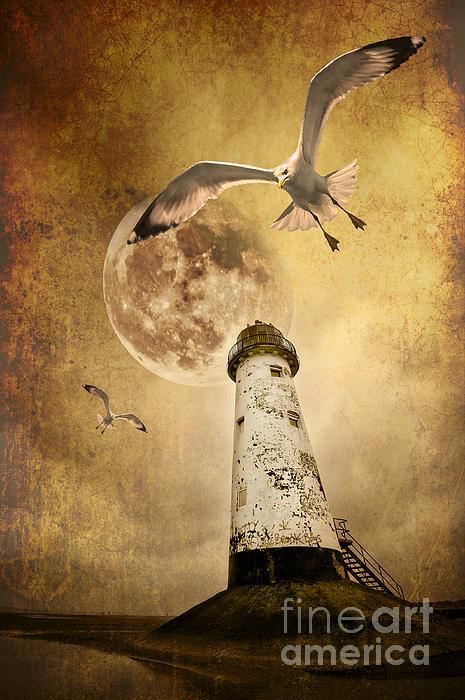Lunar Flight Print by Meirion Matthias