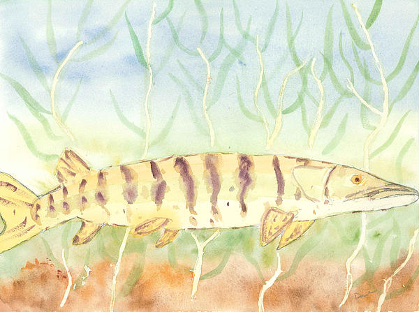 Lurking Tiger Print by David Crowell