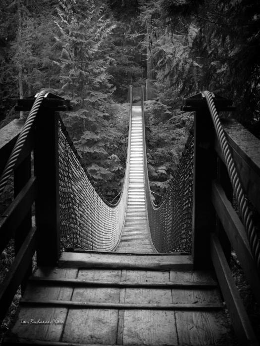 Lynn Canyon Bridge Print by Tom Buchanan