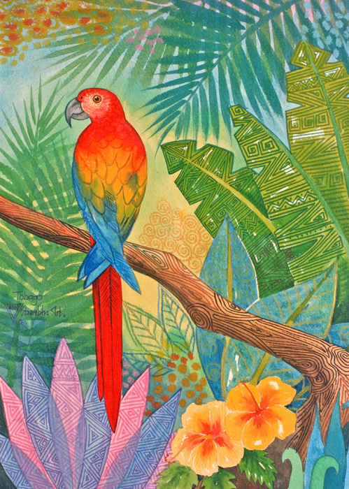 Macaw Print by Jennifer Baird