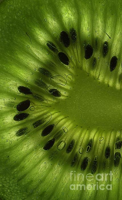 Macro Kiwi Slice Print by Janeen Wassink Searles