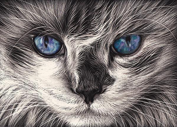 Mad Cat Print by Elena Kolotusha