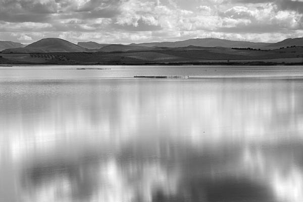 Guido Montanes Castillo - Magical waters at the lake. Monocromo.