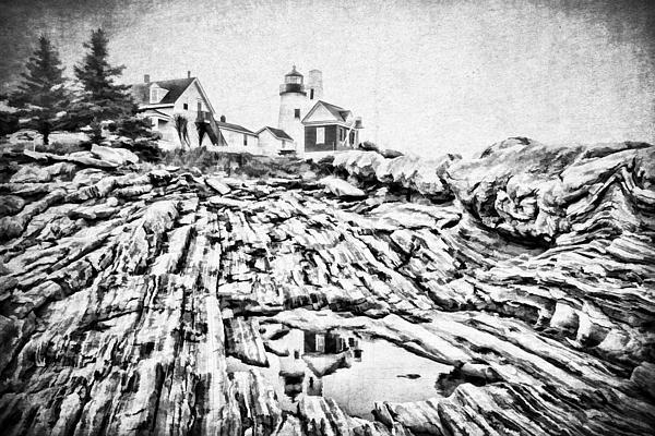 Maine Print by Darren Fisher