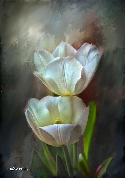 Majestic Tulips Print by Bonnie Willis