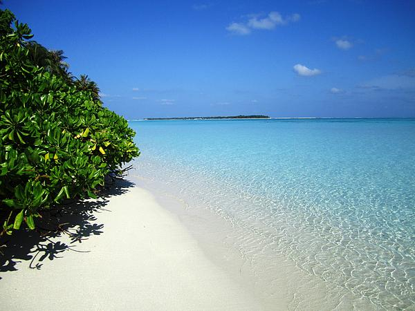 Olga Toews - Maldives