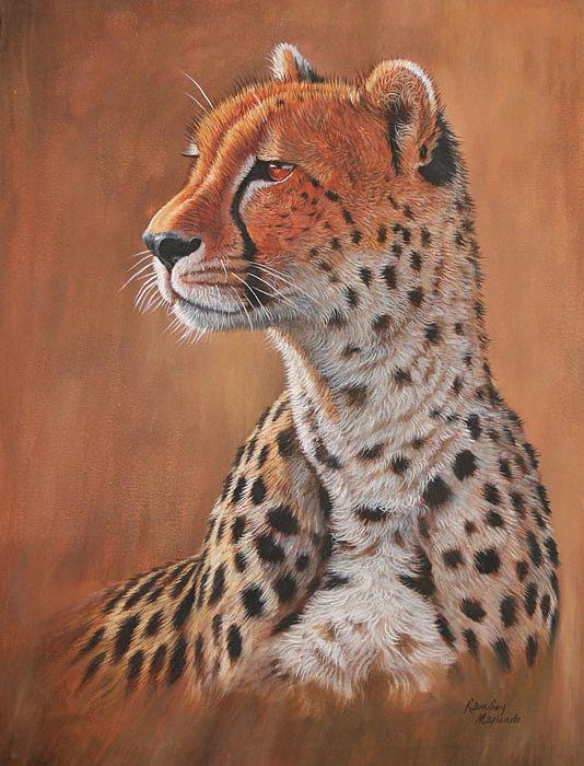 Ramsey Mapunde - Male Cheetah