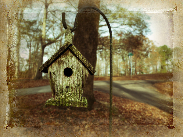 Mamaw's Birdhouse Print by Steven  Michael