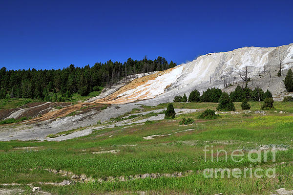 Mammoth Hot Springs Lower Terrace Print by Louise Heusinkveld