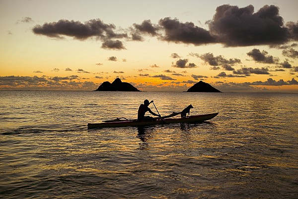 Man And Dog In Canoe Print by Dana Edmunds - Printscapes