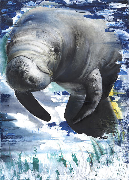 Anthony Burks - Manatees