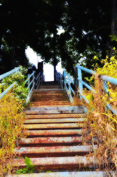 Manayunk Steps Print by Bill Cannon