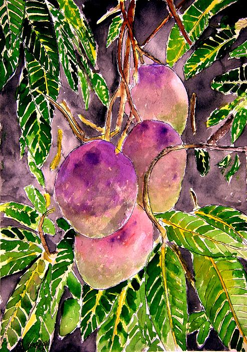 Mango Tree Fruit Painting