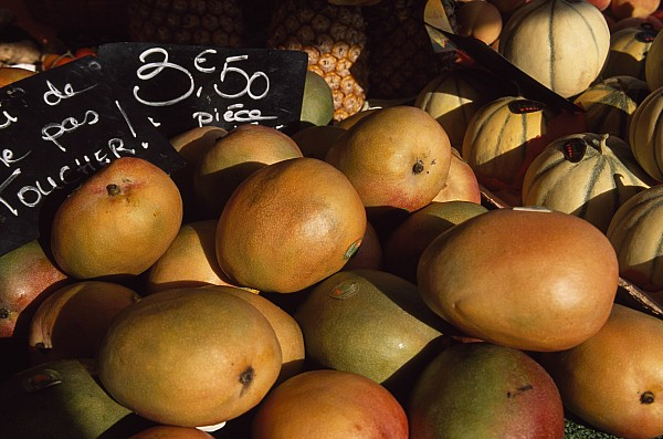 Mangoes And Melons Priced In Euros Print by David Evans