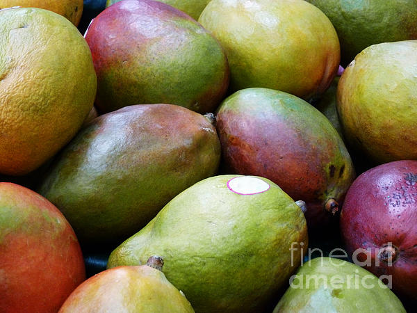Mangoes Print by Methune Hively