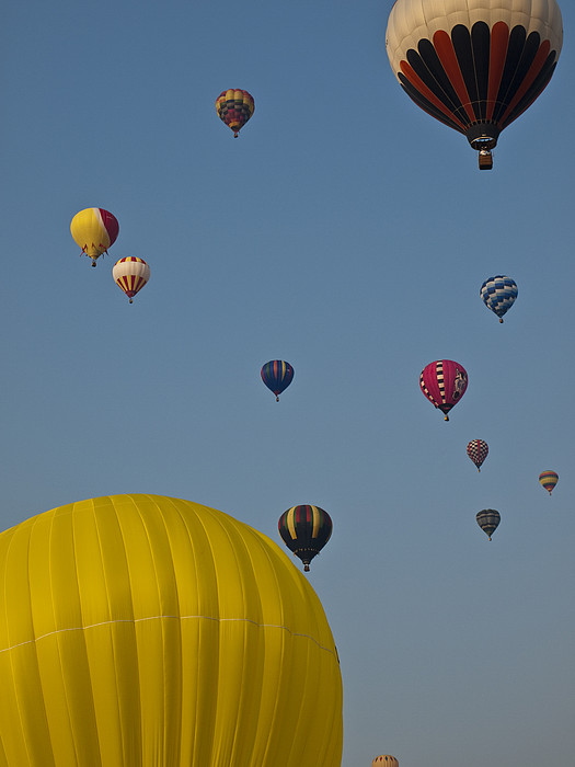 Many People Lift Off In Hot Air Print by Stacy Gold