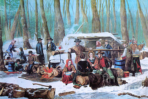 Maple Sugaring, 1872 Print by Photo Researchers